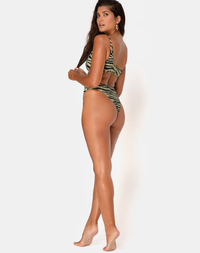 Sikila Bikini Bottoms in Khaki Tiger by Motel