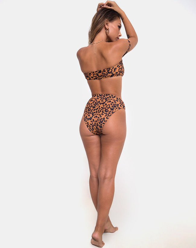 Val Bikini Bottom in burn Out Leopard by Motel