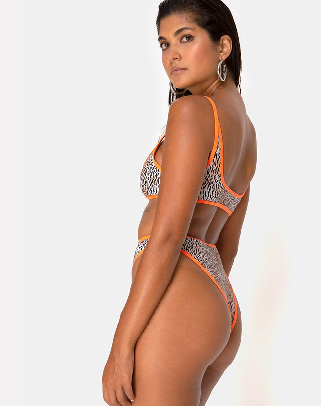 Sikila Top Bikini in Mini Tiger with Orange Binds by Motel