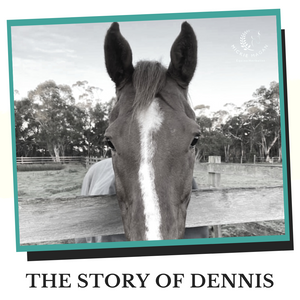 The reason Colic R-X exists and the story of Dennis.