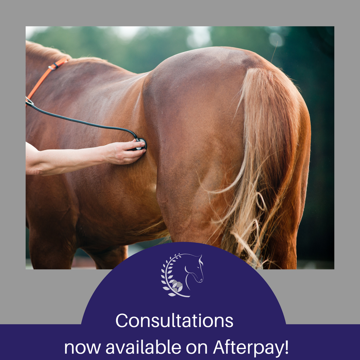 Consultation on Afterpay