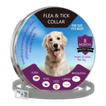 Pro Guard Flea And Tick Collar | Pet Accessories | Collar for Pets