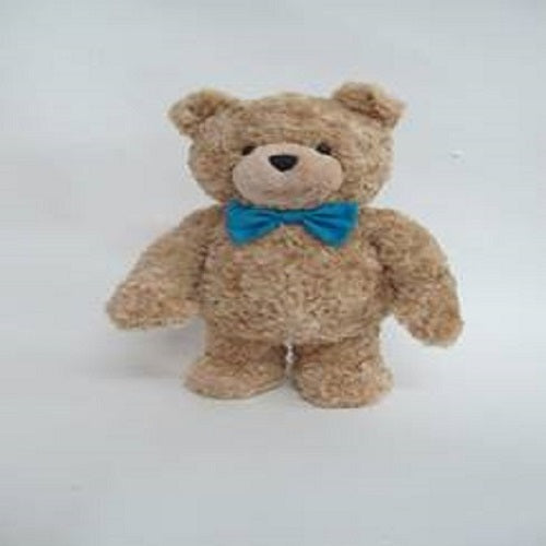 TED BEAR 12 INCHI