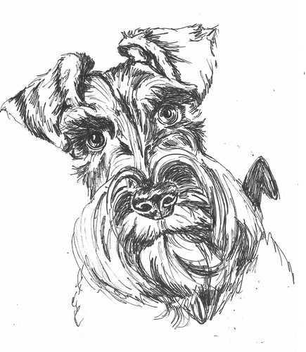 A5 Pet portrait drawing