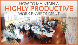 How to Maintain a Highly Productive Work Environment