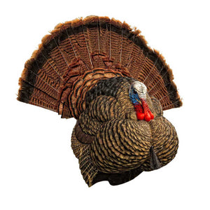 Avian X LCD Strutter Turkey Decoy - Pacific Flyway Supplies
