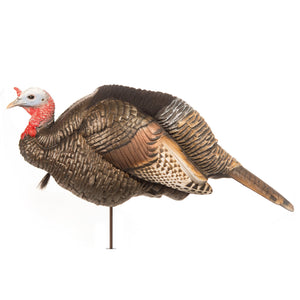 Dave Smith Decoys 3/4 Strut Jake Decoy - Pacific Flyway Supplies