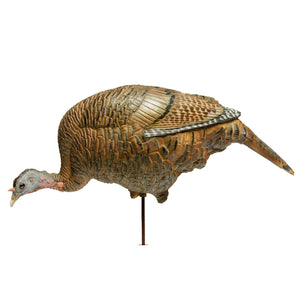 Dave Smith Decoys Feeding Hen Decoy - Pacific Flyway Supplies