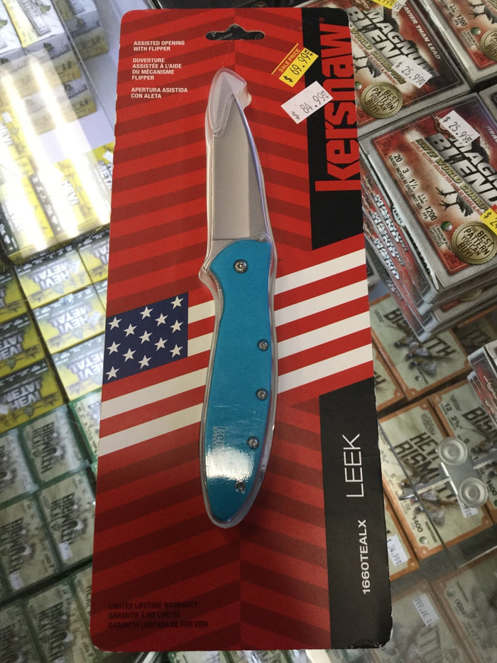 Kershaw Knife Blue Leek 1660TEALX