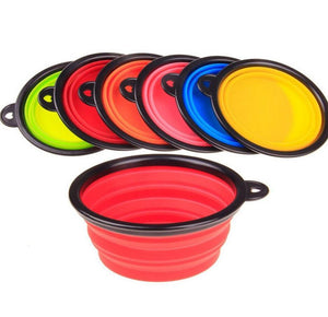 Foldable Silicone Bowl