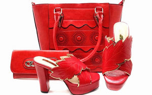 Women's  Shoes and Bag Set