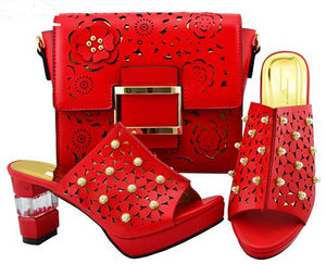 Women's  Italian Shoes and Bag Set