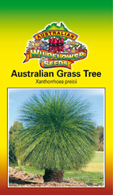Xanthorrhoea preisii - Australian Grass Tree (OVERSEAS OPTION NO GST)