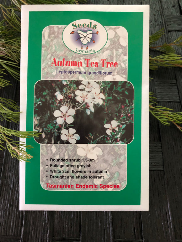 Seeds from Tasmania - Autumn Tea Tree (OVERSEAS OPTION NO GST)