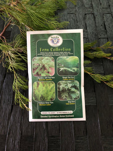Seeds from Tasmania - Fern Collection (OVERSEAS OPTION NO GST)