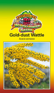 Acacia acinacea - Gold Dust Wattle (OVERSEAS OPTION NO GST) (SEEDS)