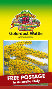 Acacia acinacea - Gold Dust Wattle (SEEDS)