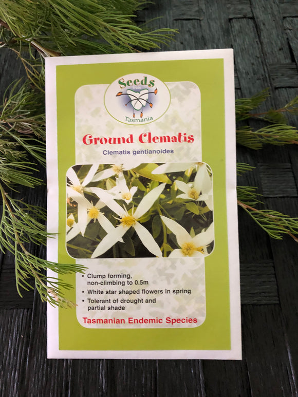 Seeds from Tasmania - Ground Clematis (OVERSEAS OPTION NO GST)