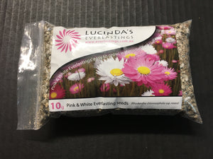Lucinda Everlastings (Pink and White Everlasting Seed) - 10g Pack (SEEDS)