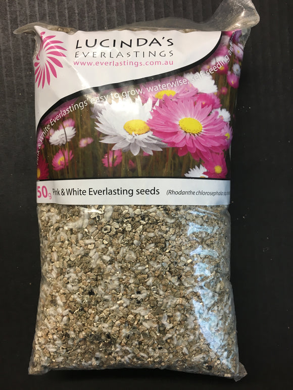 Pink and White everlasting seed - 50g Pack