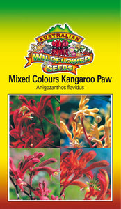 Anigozanthos flavidus - Mixed Colours Kangaroo Paw (OVERSEAS OPTION NO GST) (SEEDS)