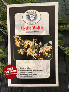 Seeds from Tasmania - Myrtle Wattle SEEDS)