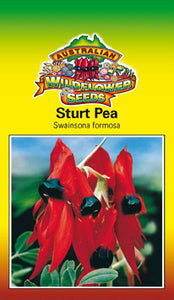Sturt Pea (OVERSEAS OPTION NO GST)