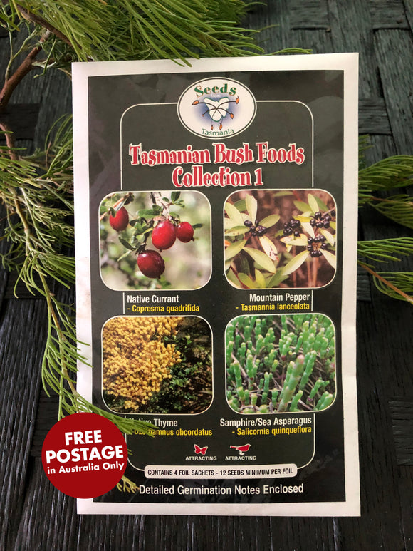 Seeds from Tasmania - Tasmanian Bush Food Collections