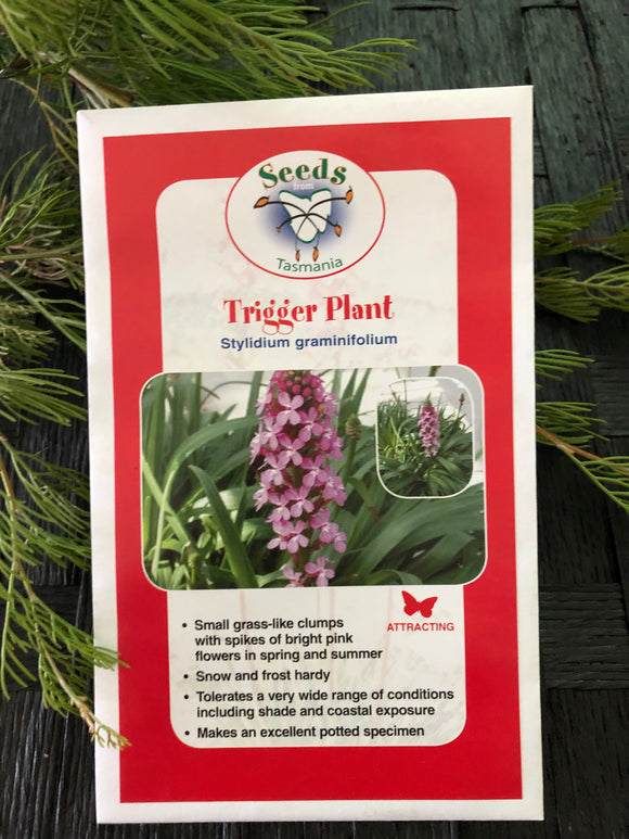 Seeds from Tasmania - Trigger Plant (OVERSEAS OPTION NO GST)