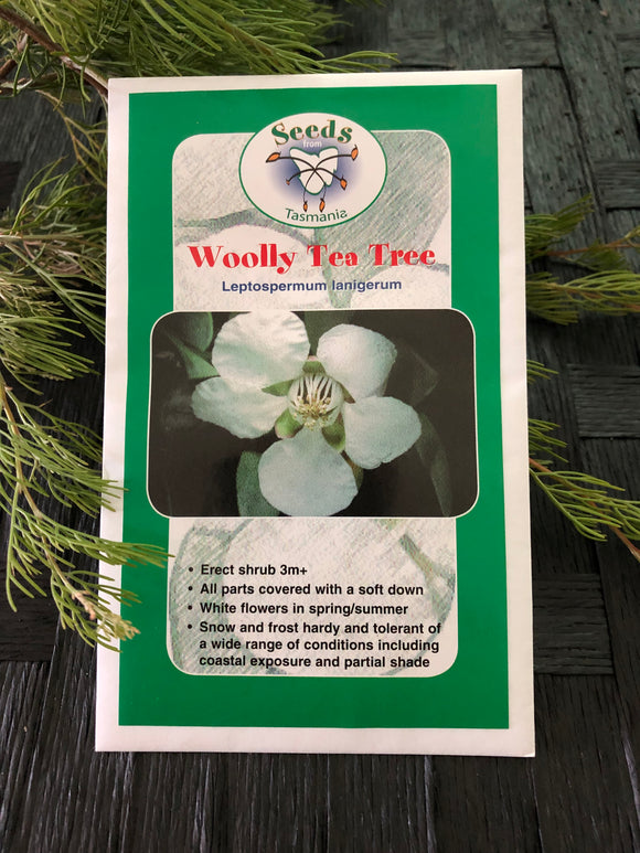 Seeds from Tasmania - Wooly Tea Tree (OVERSEAS OPTION NO GST)