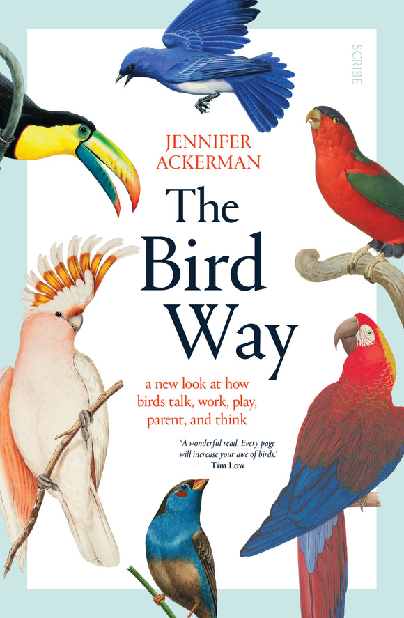 PREORDER NOW - The Bird Way by Jennifer Ackerman
