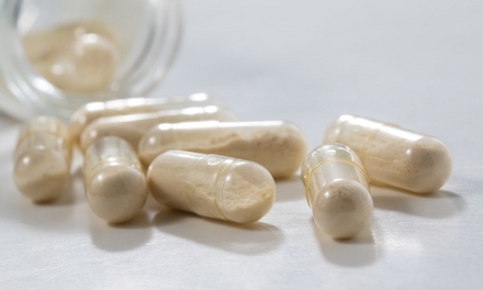 The best probiotic strains for supporting gut health.