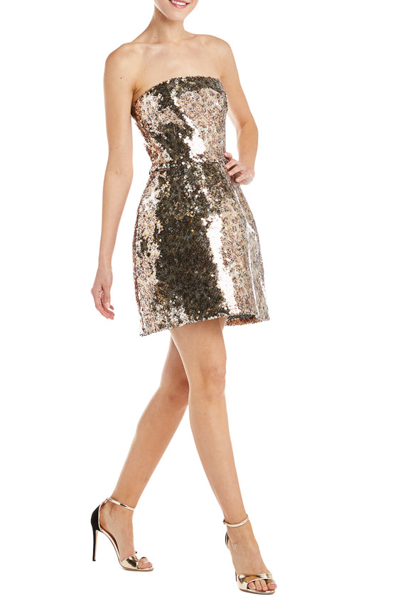 Fall 2019 Leopard Print Sequin Dress