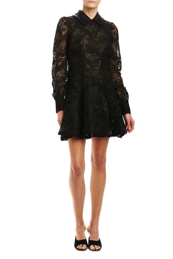 Folded Collar Lace Dress