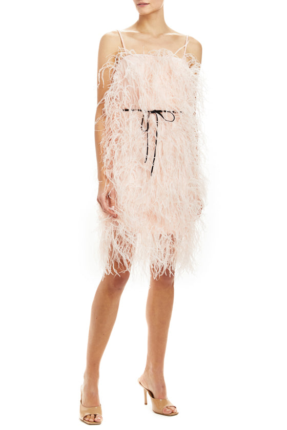 Feather Mini Slip Dress