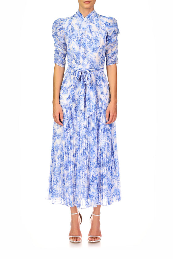 Printed Pleated Midi Dress