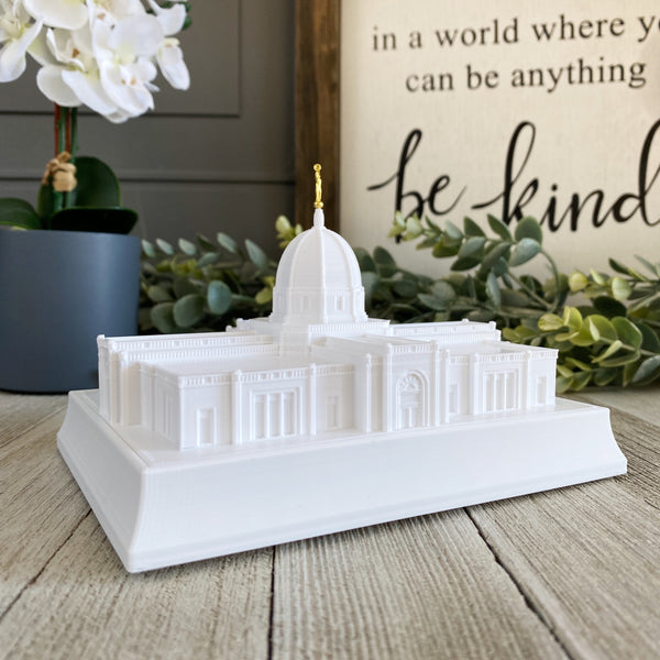Tucson Arizona Temple Night Light