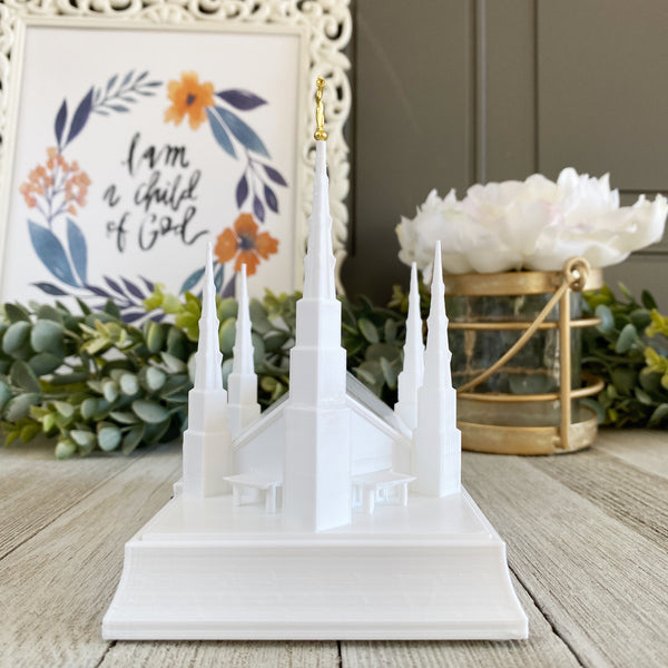 Dallas Texas Temple Night Light