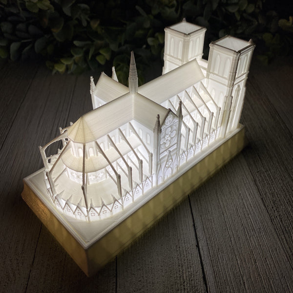Notre Dame Cathedral Night Light