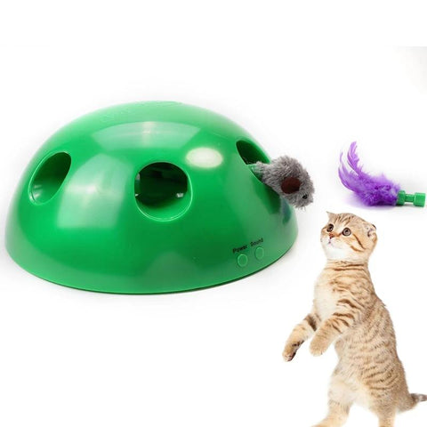 Image of Pop N' Play Cat Toy