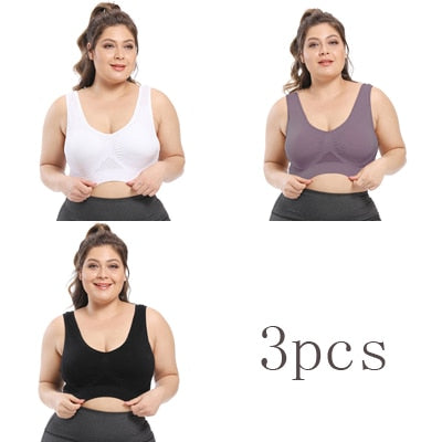 Image of 3PCs Queenral Plus Size Women Bra