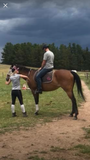 Lessons On Our Horses - Empire Equestrian