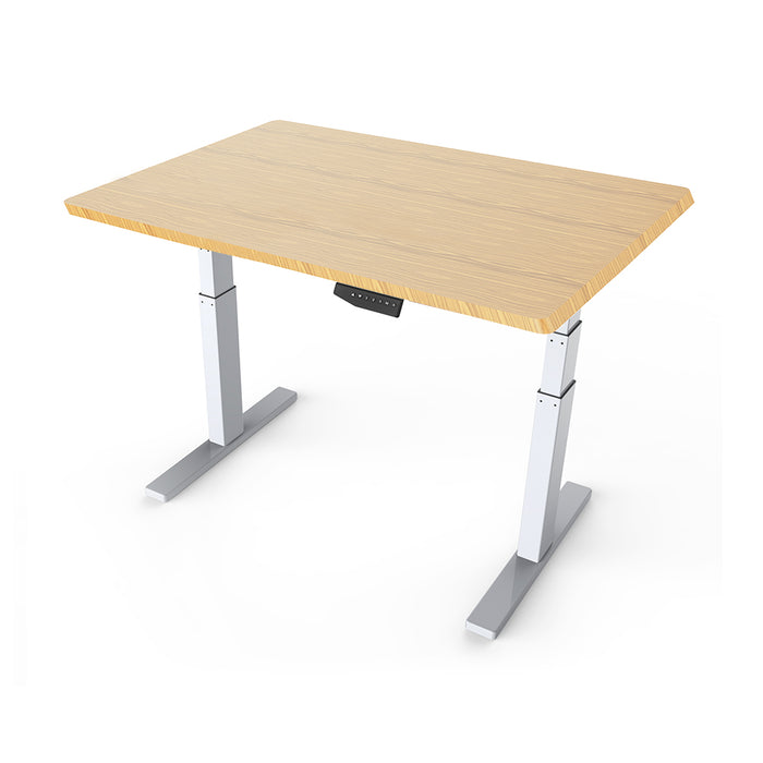 Arise Basix White Electric Sit and Stand Desk