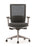 Neptune Mesh Back Office Chair