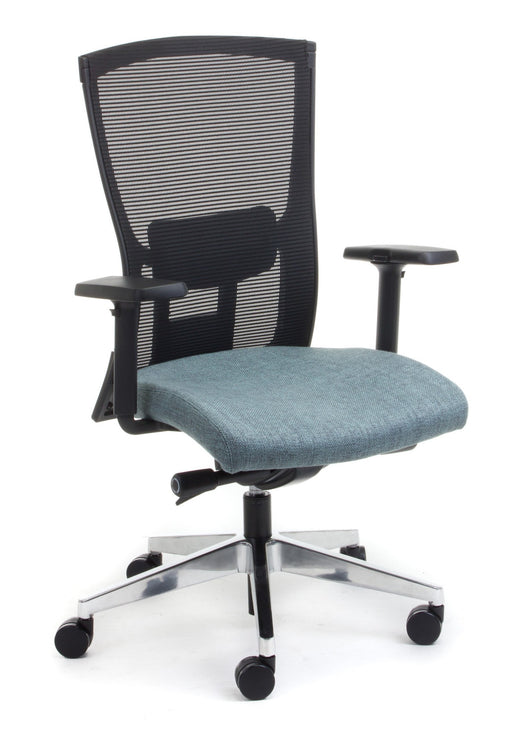 Domino Executive Mesh Back Ergonomic Office Chair