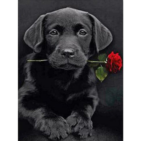 Black Lab puppy with Rose, DIY Diamond Painting Kit