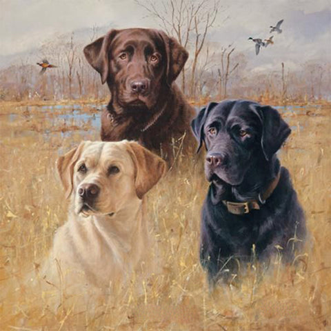 Three Labrador Dogs, DIY Diamond Painting Kit