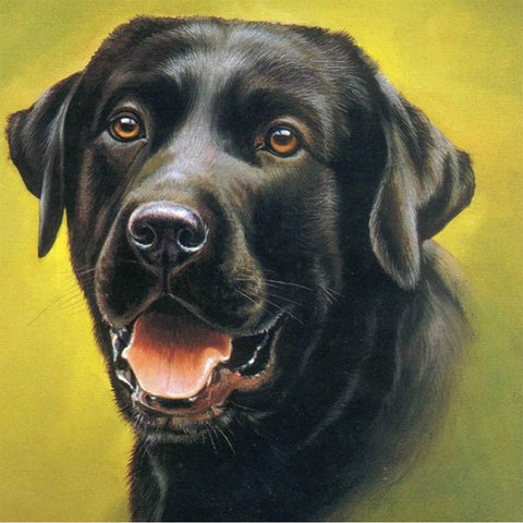 Black Lab, DIY Diamond Painting Kit
