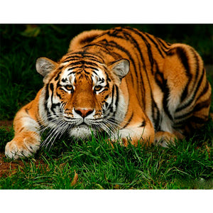 Crouching Tiger, DIY Diamond Painting Kit, Crystal Cross Stitch, Diamond Embroidery