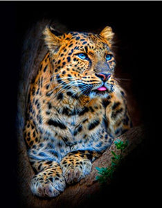 Blue Eyed Leopard, DIY Diamond Painting Kit
